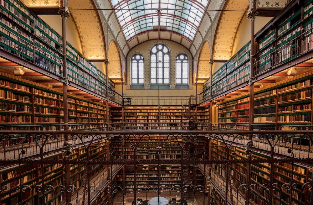 brown wooden shelves inside building
