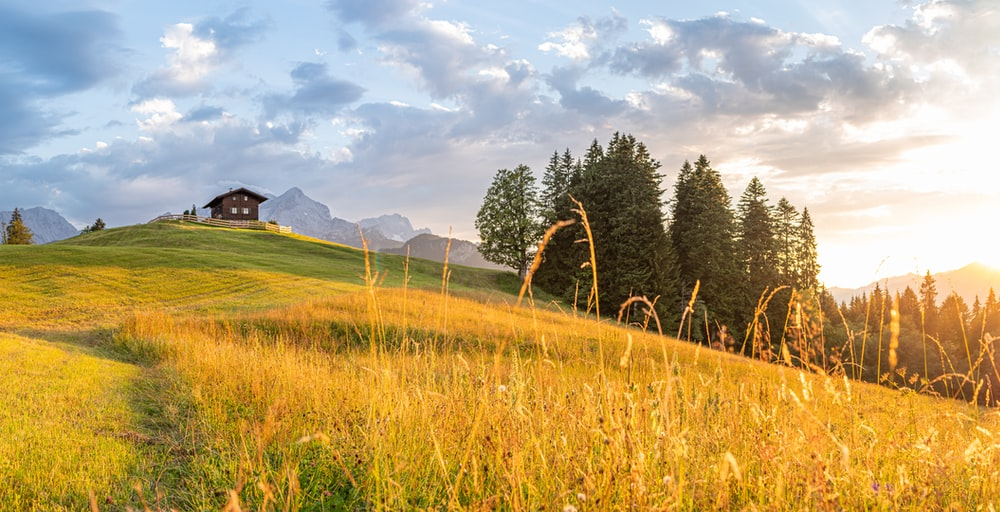 green grass field near green trees and mountain under white clouds and blue sky during daytime