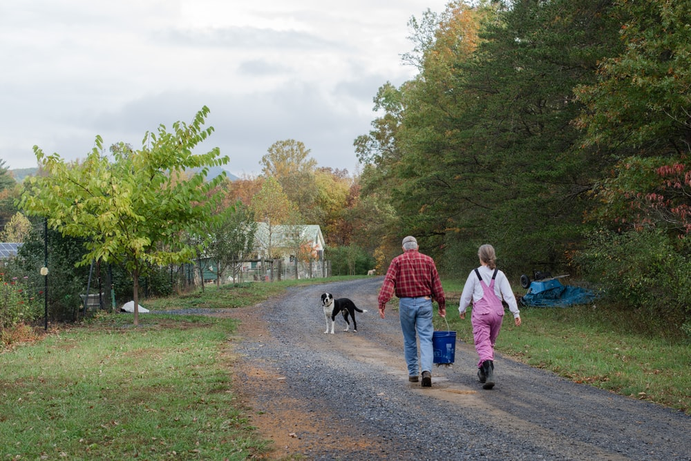 woman in red jacket walking with black dog on pathway during daytime