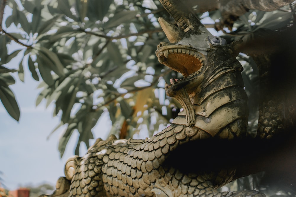 brown dragon statue in close up photography