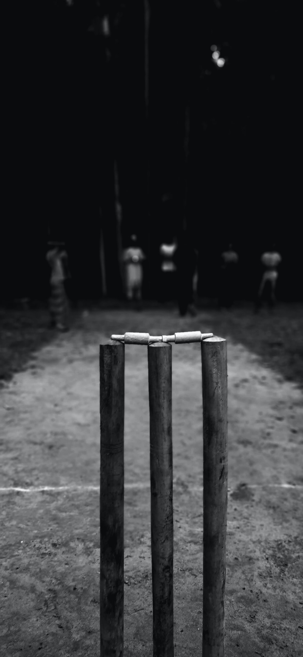 grayscale photo of wooden poles