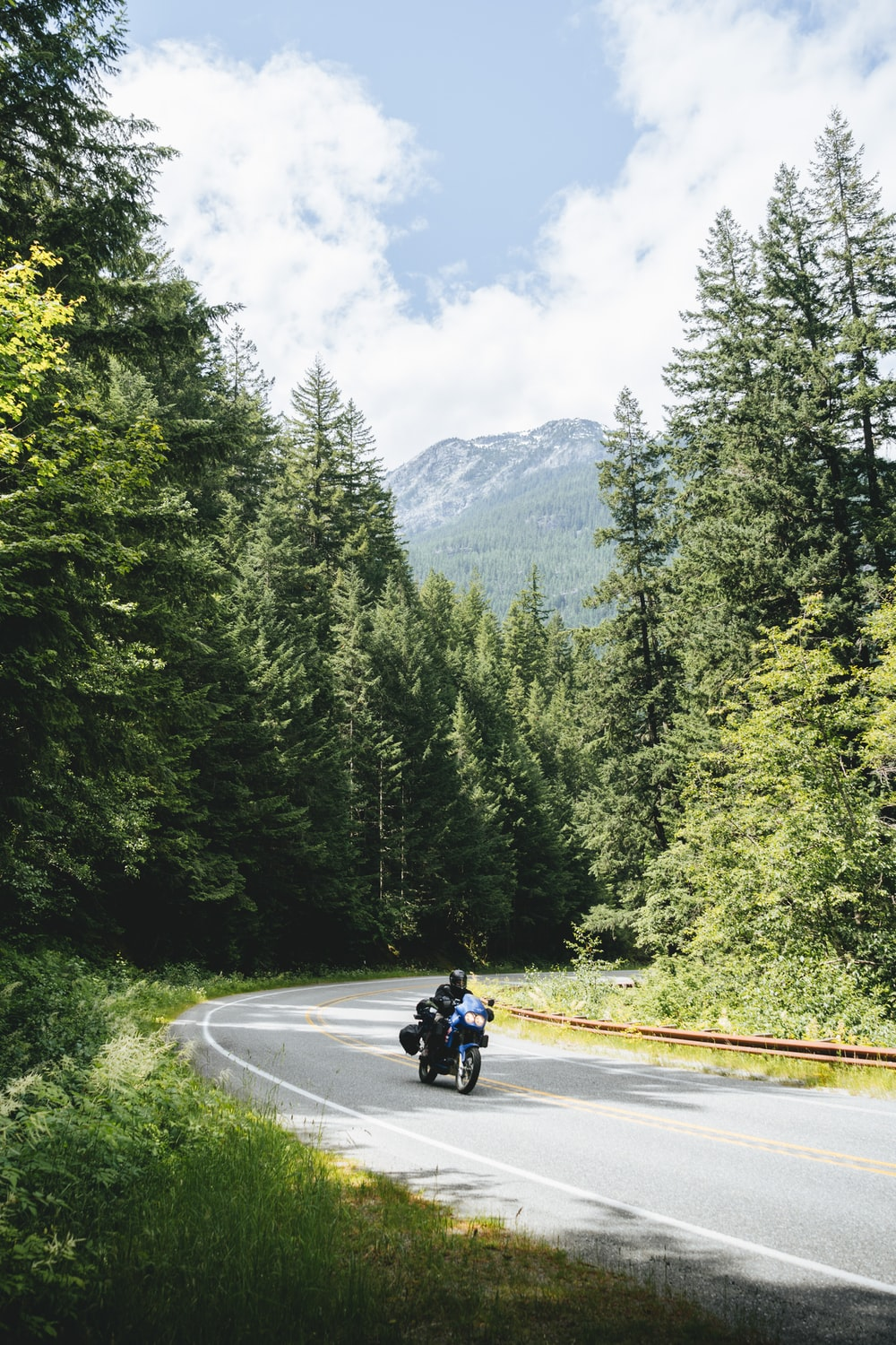 man riding motorcycle on road near green trees during daytime