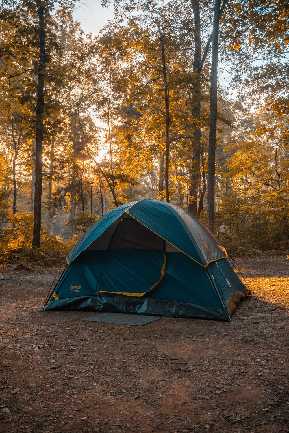 blue and orange dome tent in forest during daytime