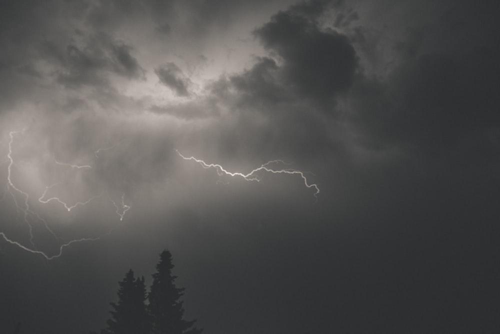 lightning strike over the forest