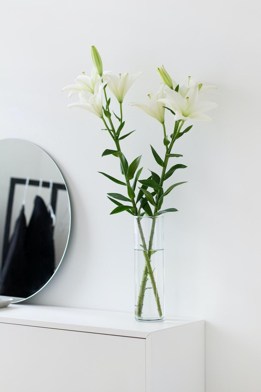 white flowers on white table
