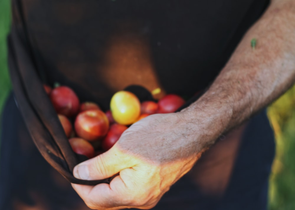person holding red and yellow fruits