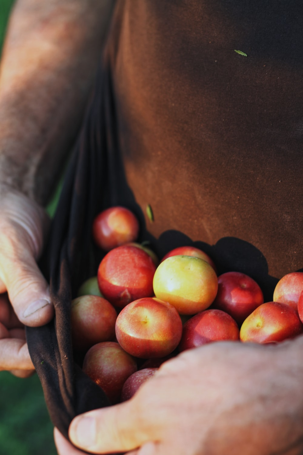 red and yellow apples on brown wooden table