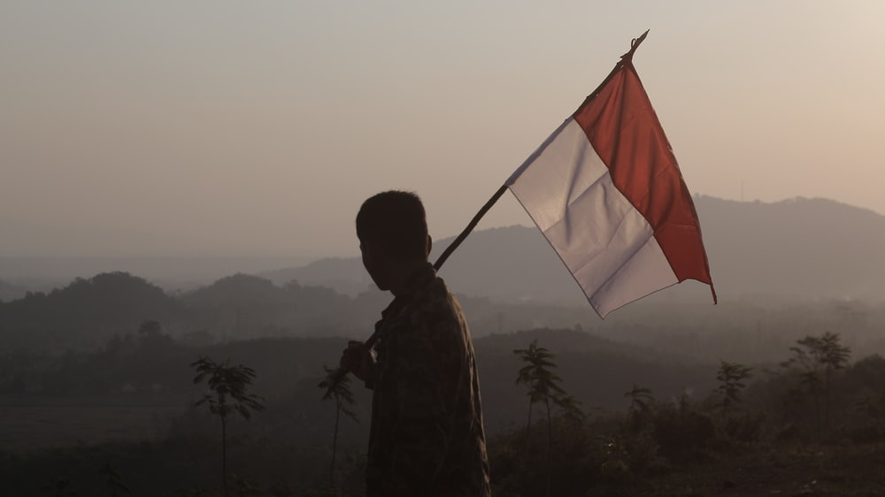 silhouette of man holding flag during daytime