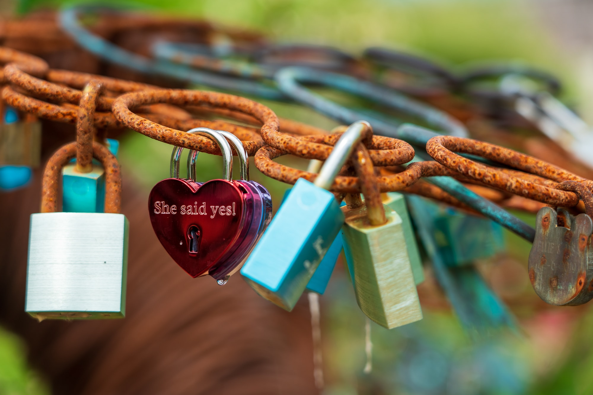A red heart-shaped lovelock with the words, she said yes on it.