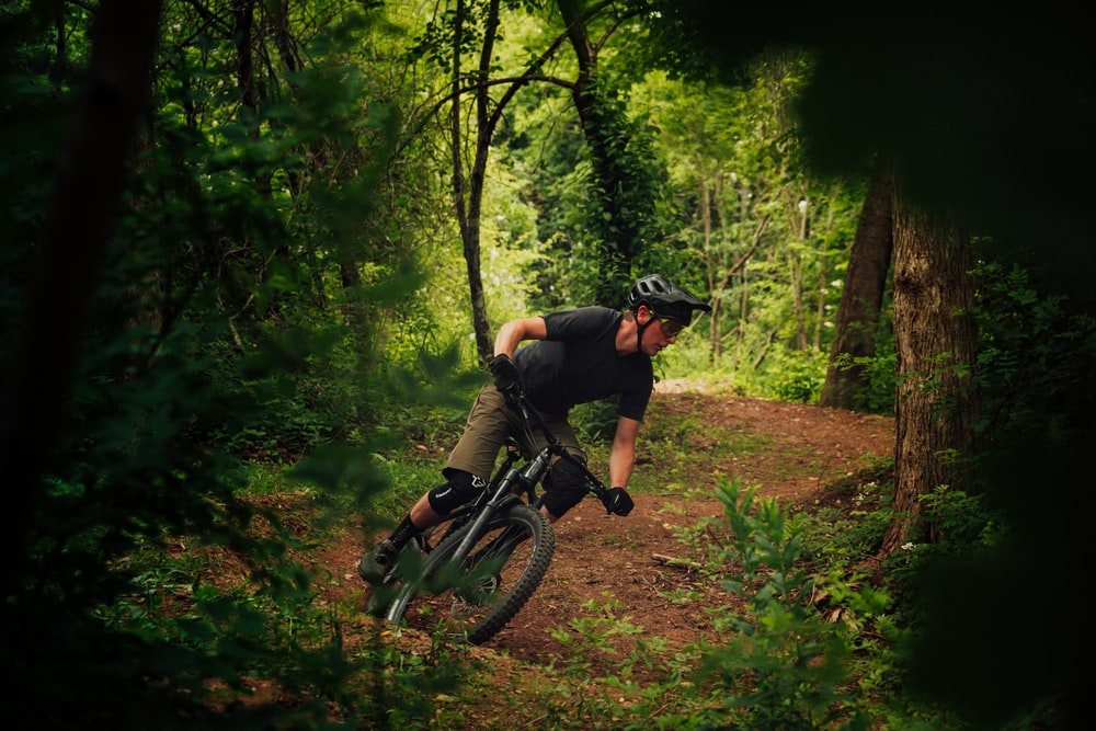 man riding bicycle in forest during daytime