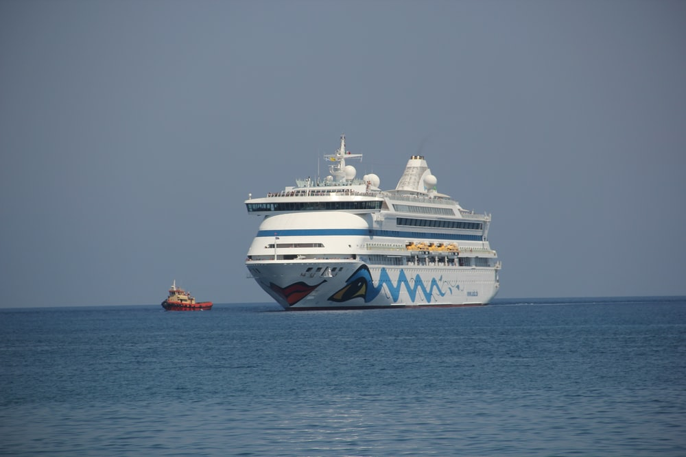 white and black cruise ship on sea during daytime