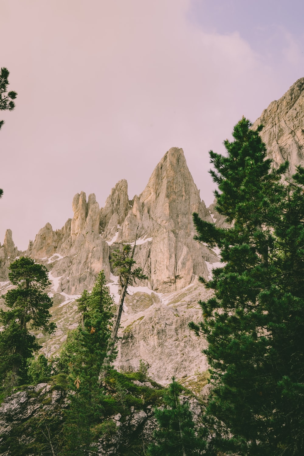 green trees near rocky mountain during daytime