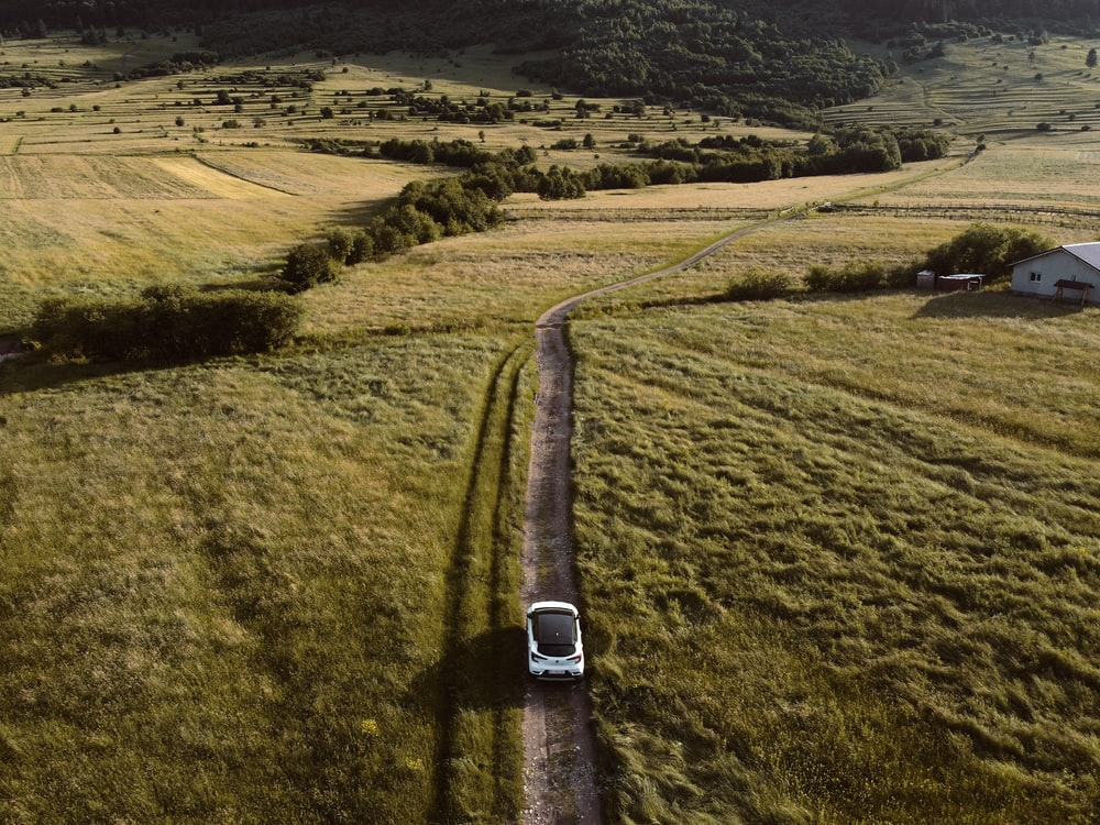 white car on road in the middle of green grass field during daytime