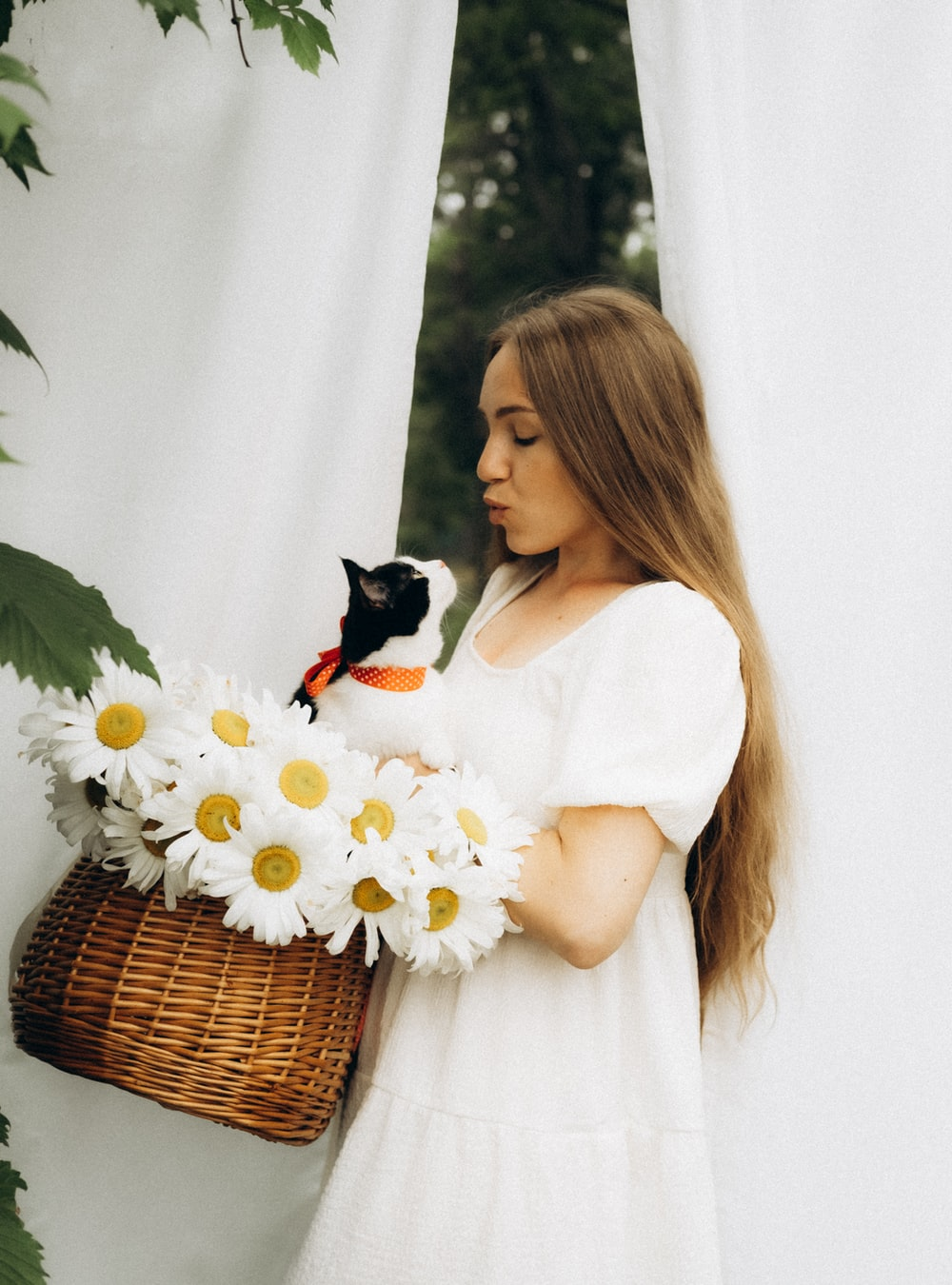 woman in white dress holding white daisy flowers