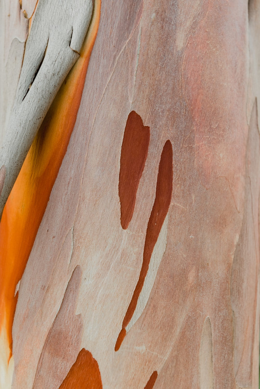 brown and white wooden surface