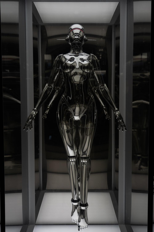 silver human skeleton in room