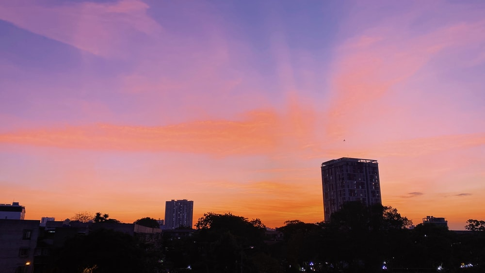 silhouette of trees and buildings during sunset
