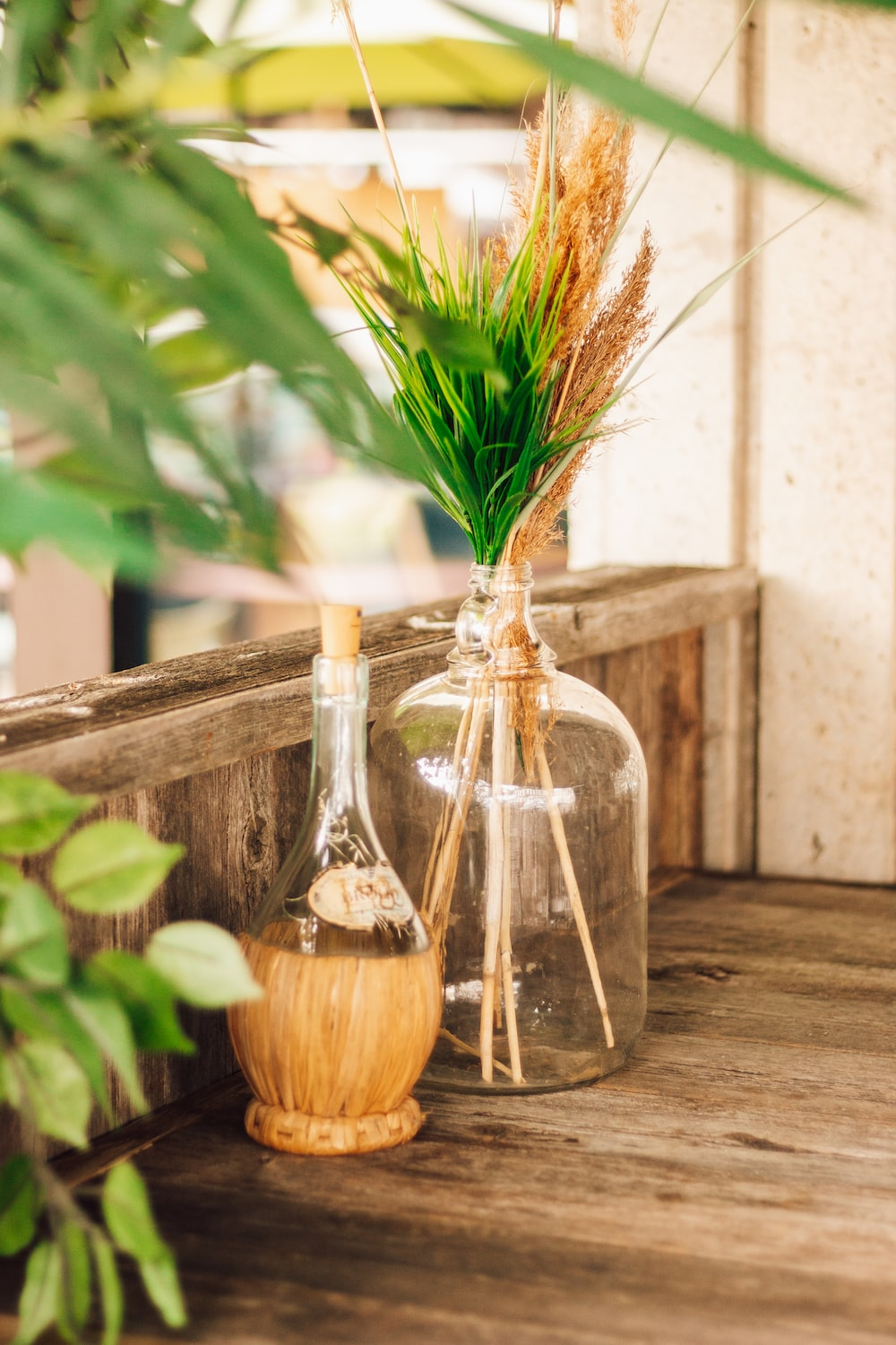 brown and green plant in clear glass bottle