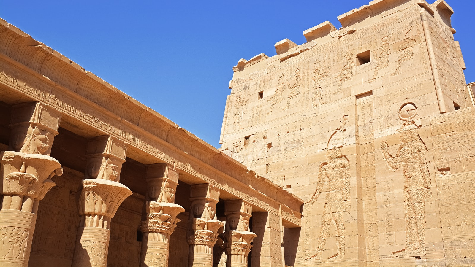 The 50+ Best Pharaoh Jokes - ↑UPJOKE↑