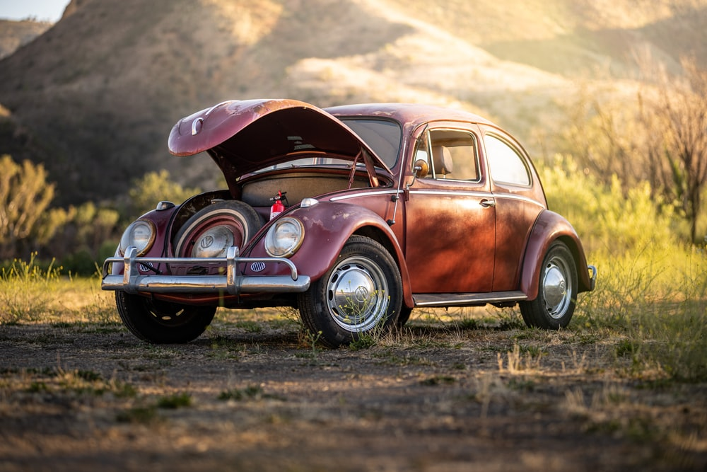 pink and white volkswagen beetle on brown field during daytime
