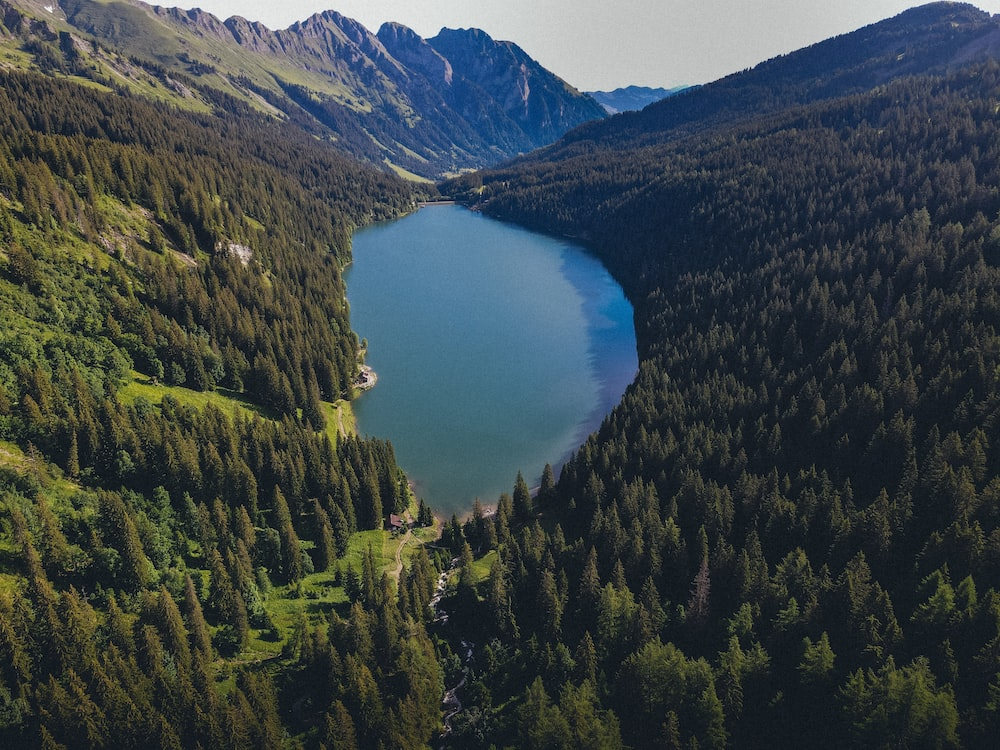 lake in the middle of green trees and mountains