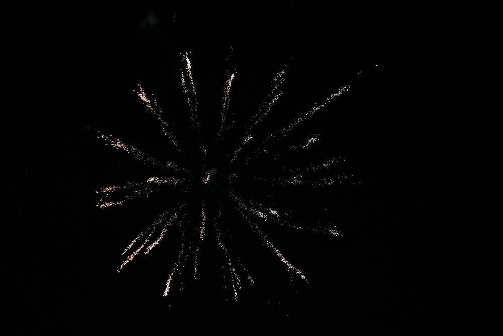 white and green fireworks in the sky