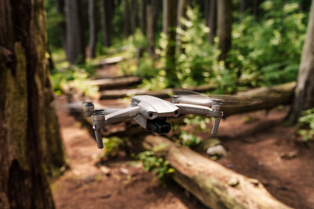 gray drone on brown wooden log during daytime