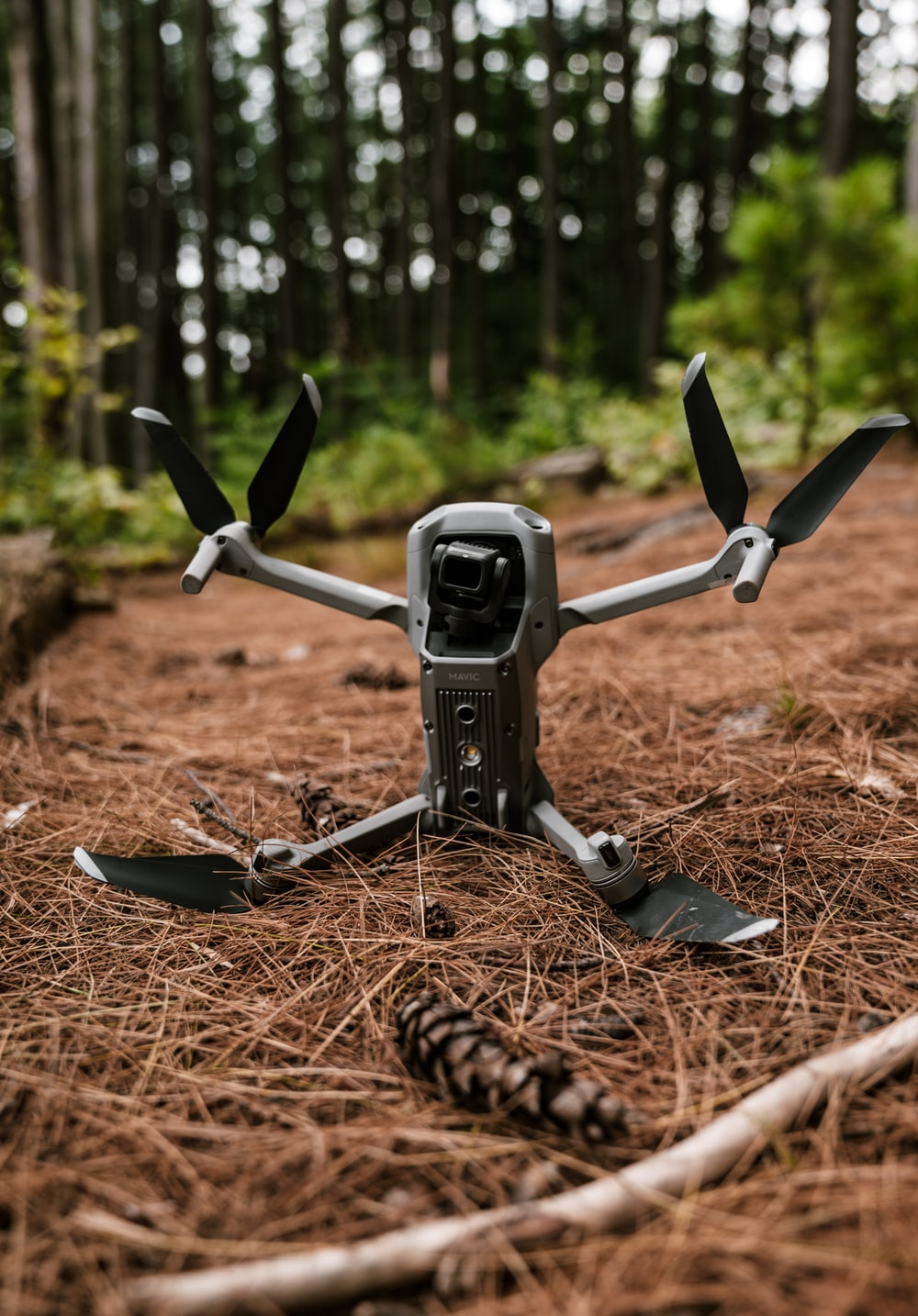 black and gray drone on brown dried leaves