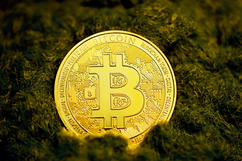 gold round coin on green grass