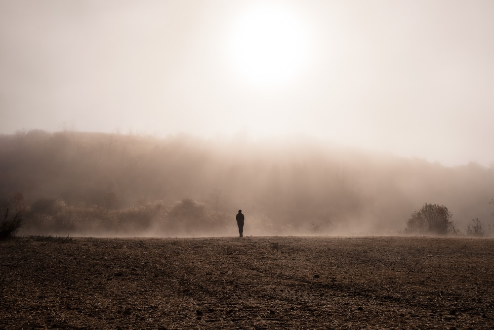 person standing on gray sand during foggy weather