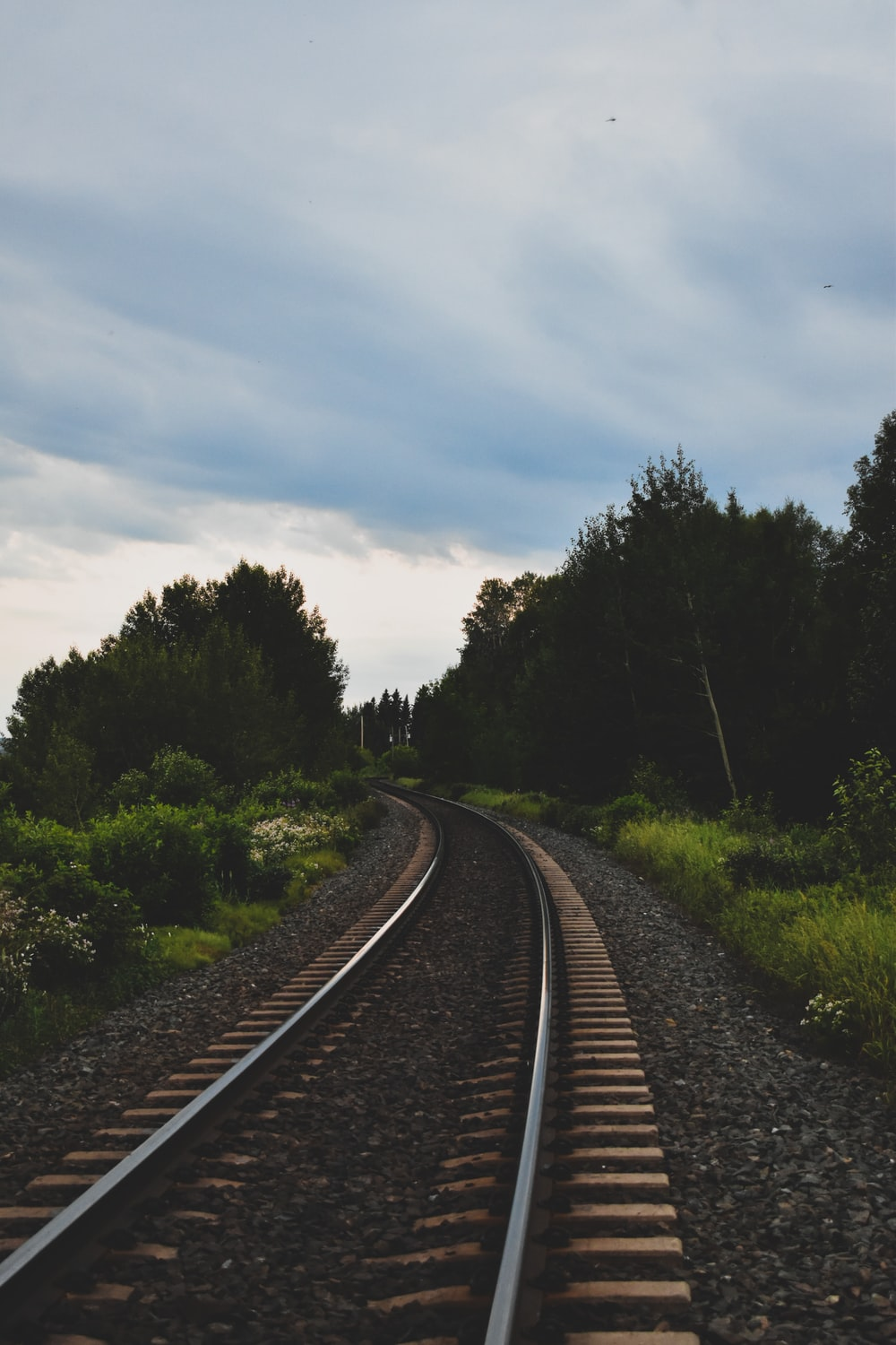 train rail near green trees under cloudy sky during daytime