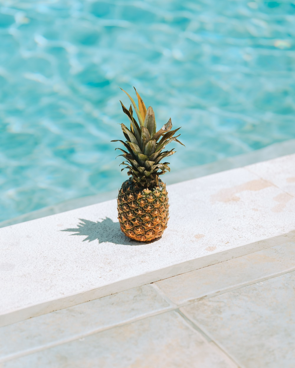 pineapple fruit on white concrete surface