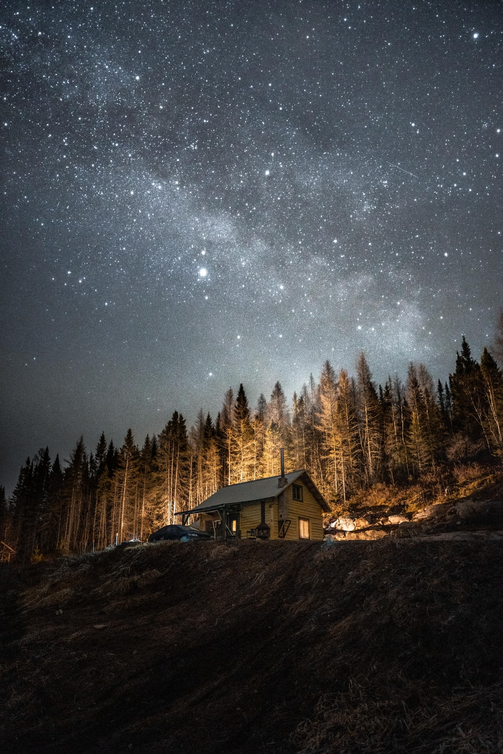 brown wooden house near trees under starry night