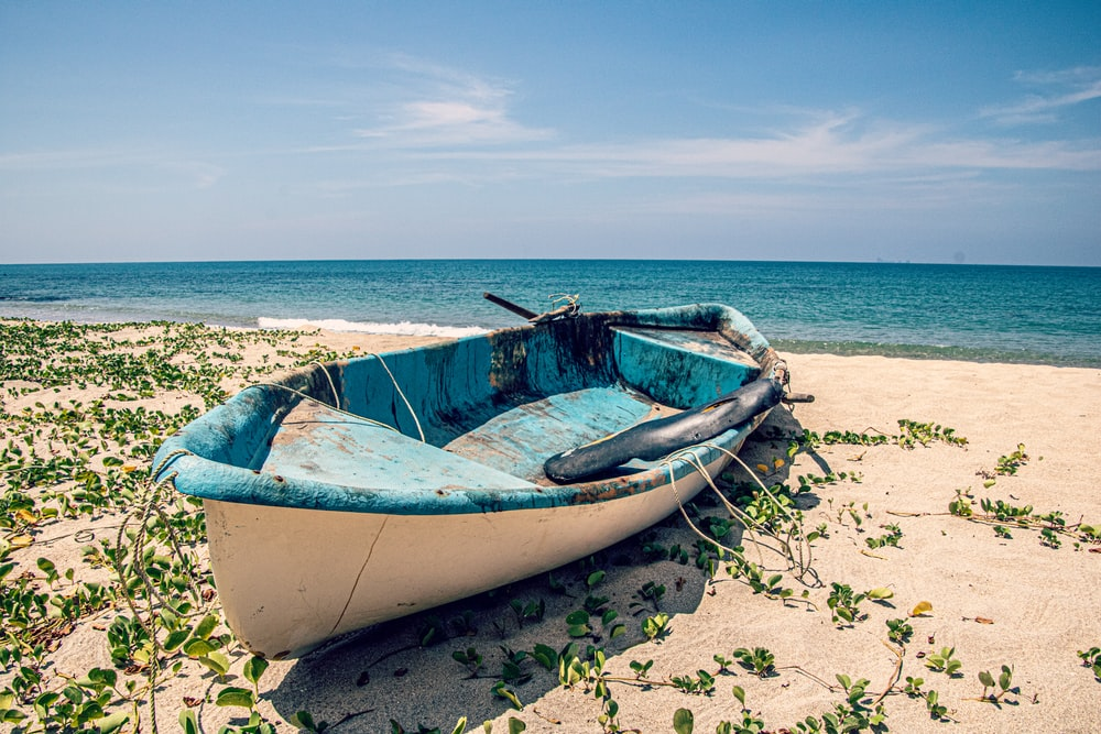 white and blue boat on beach during daytime