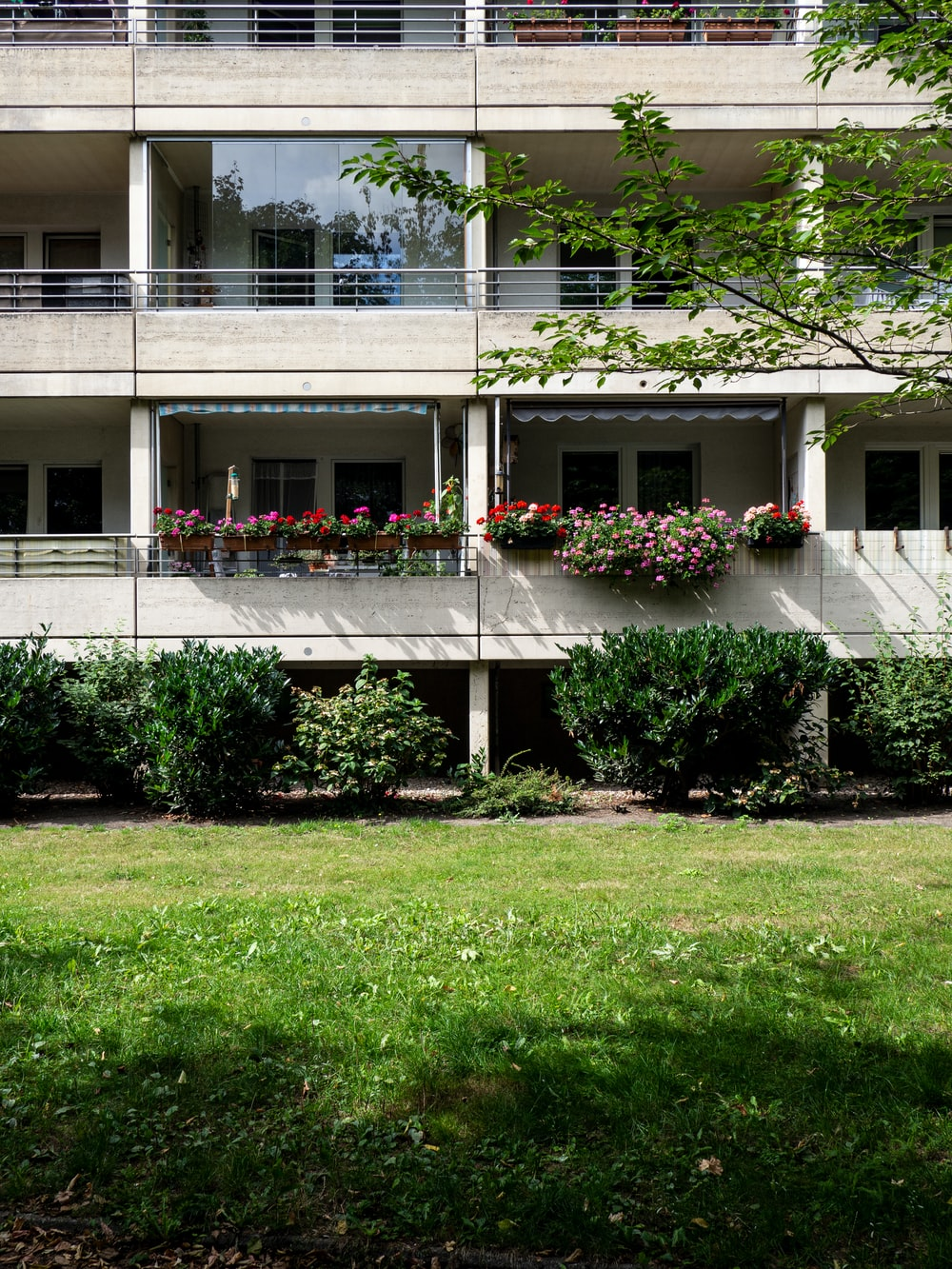 white concrete building with green grass lawn