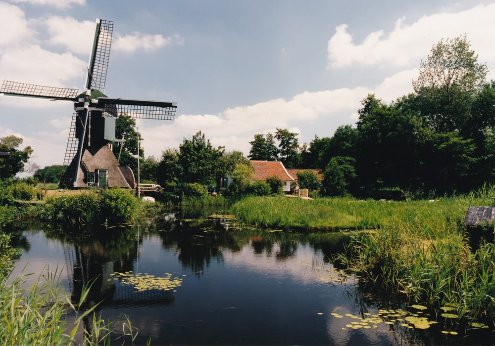 brown and white windmill near green trees and body of water during daytime