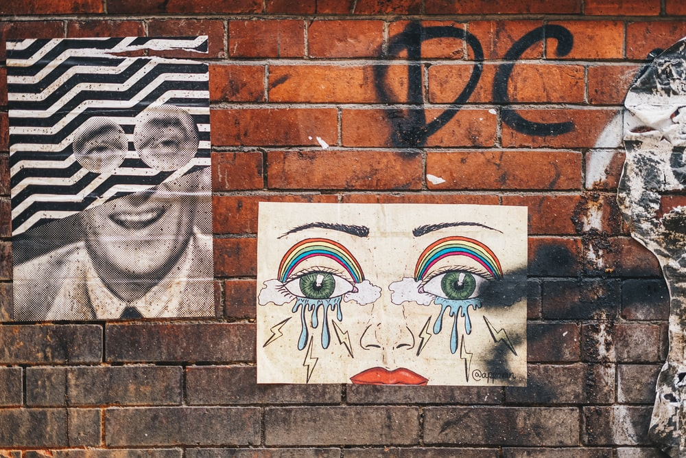 white and brown human face wall art