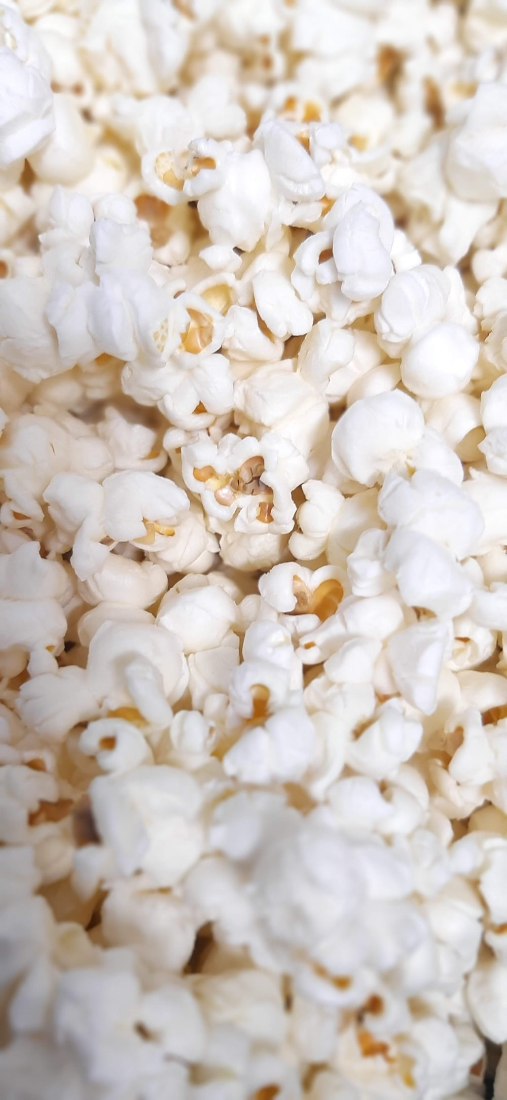 white popcorn in close up photography