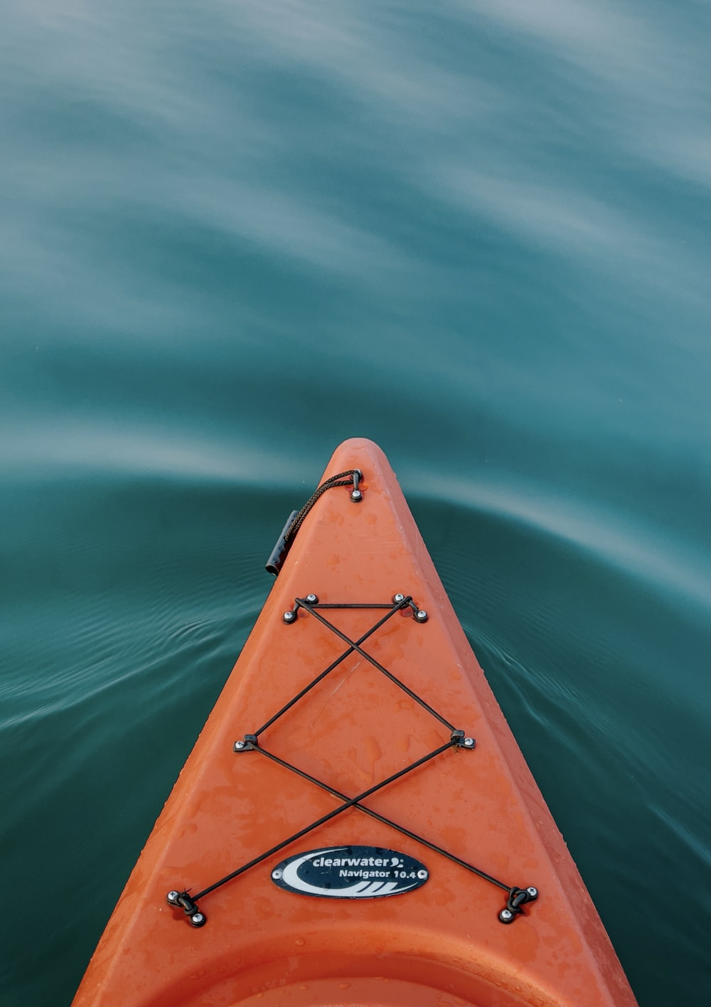 brown boat on green water
