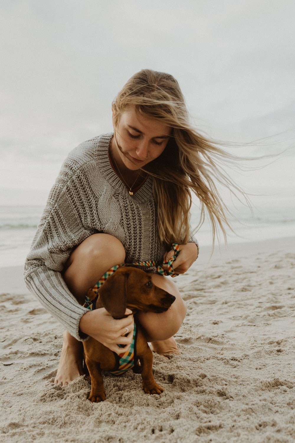 woman in gray knit sweater hugging brown short coated dog on beach during daytime