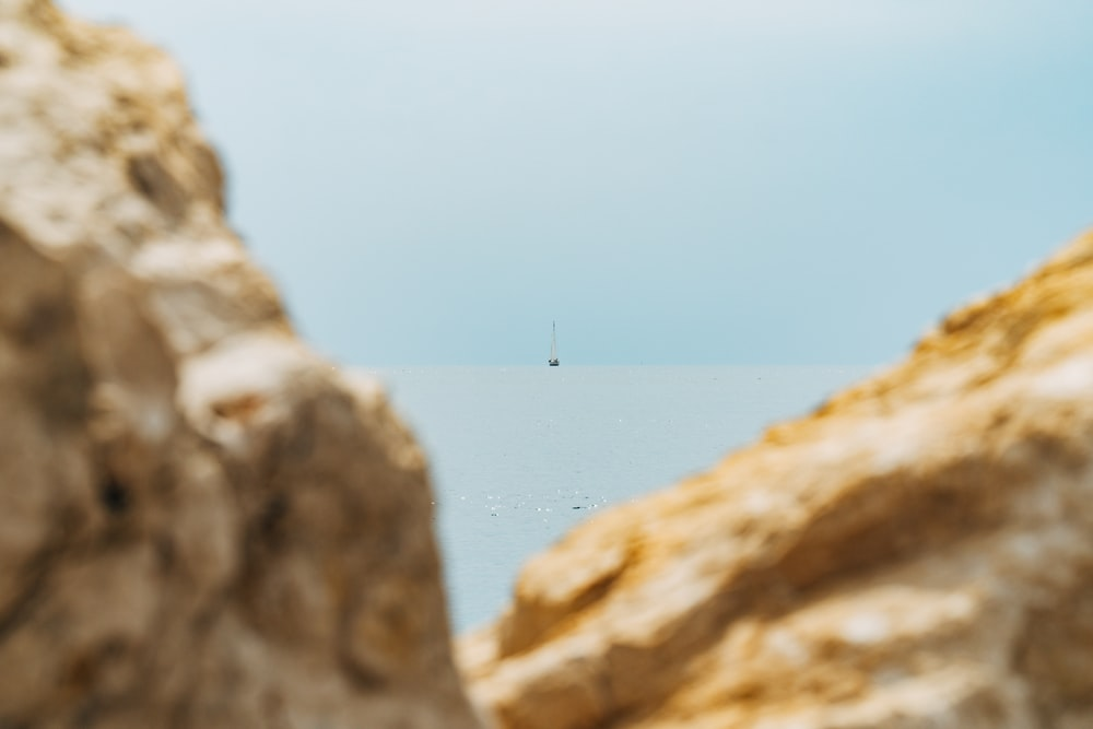 white bird flying over brown rocky mountain during daytime