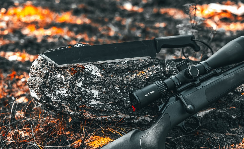 black rifle on brown dried leaves