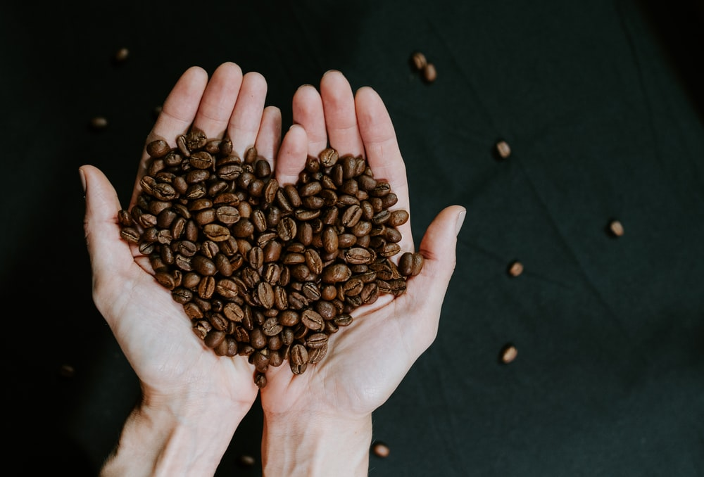 brown coffee beans on persons hand