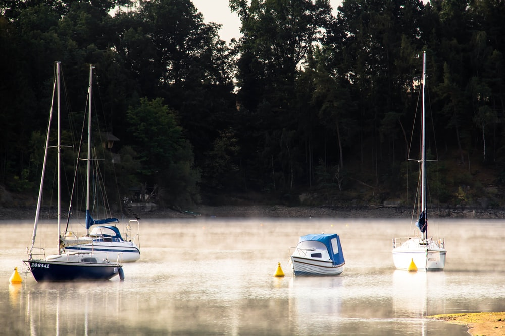 white and blue boat on river during daytime