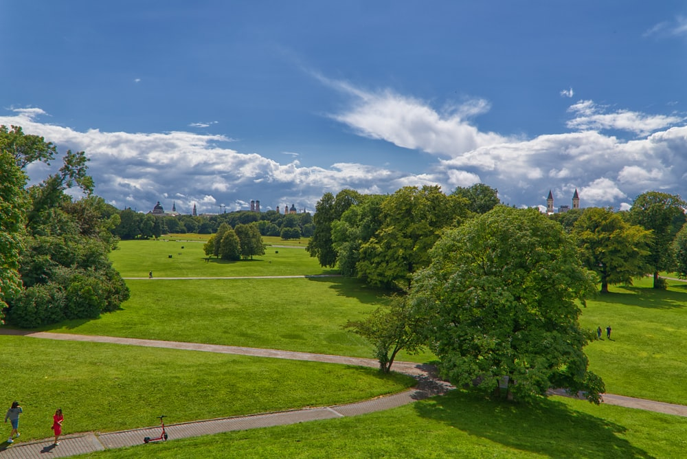 green trees on green grass field under blue sky during daytime