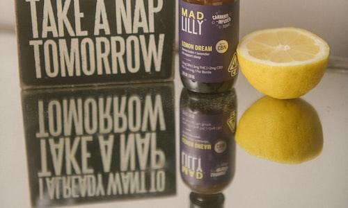 meadowlark lemon facts