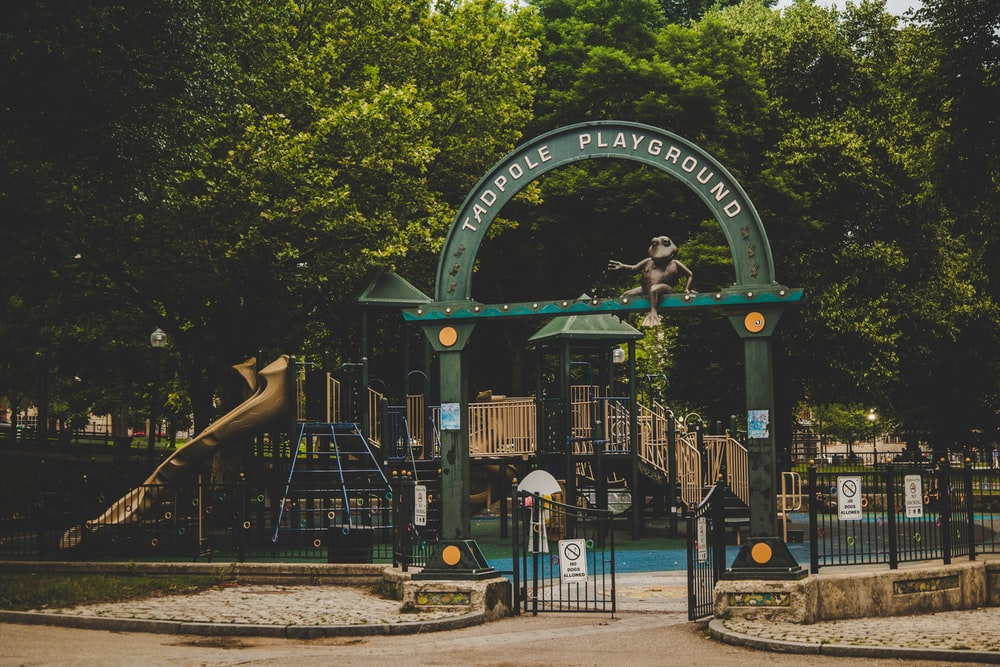 people walking on park with green and black roller coaster during daytime