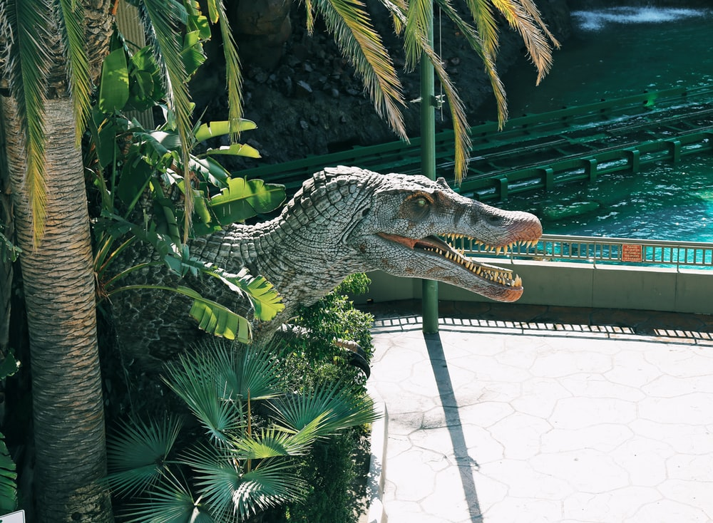 crocodile statue near green leaf plant during daytime