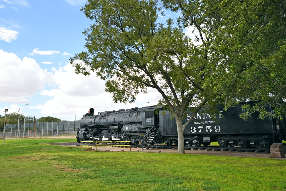 black train on green grass field near green trees during daytime