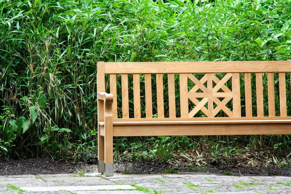 brown wooden bench beside green leaves